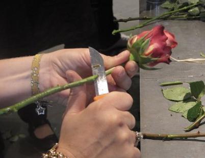 Art floral savoirecrire - Couper en biseau ...